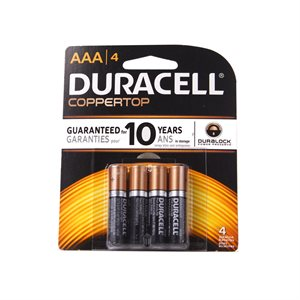 AAA Batteries - 4 Pack